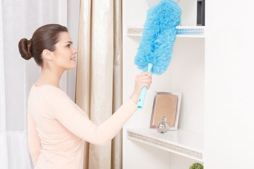 Apartment Cleaning in Coats North Carolina